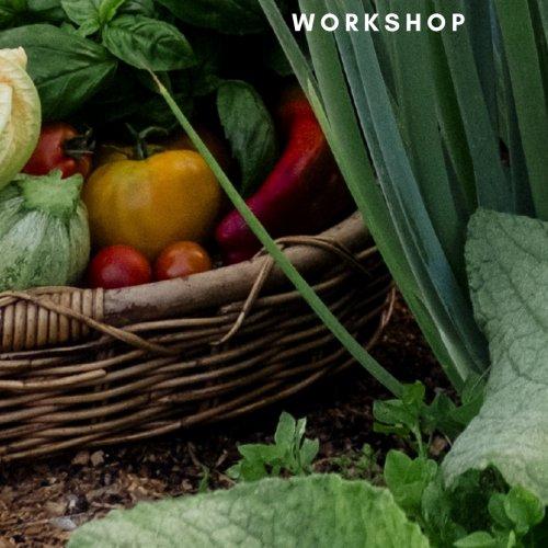 Edible Garden - WORKSHOP